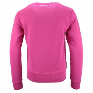 Dsquared2 Sweater Roze Maple Leaf
