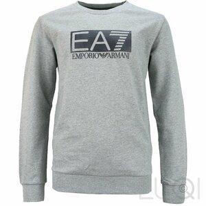 EA7 Sweater Grijs