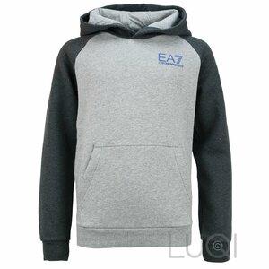 EA7 Hoody Grijs